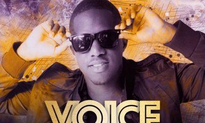 """Aaron """"Voice"""" St. Louis"""