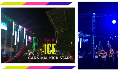 tribe ice